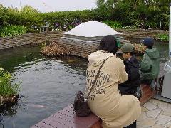 横浜八景島シーパラダイス