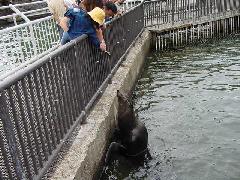 小樽水族館