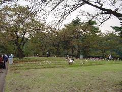 向ヶ丘遊園