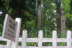 高野山の視察記録