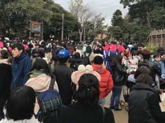 東京ディズニーシー