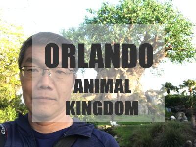 Walt Disney World Animal Kingdom